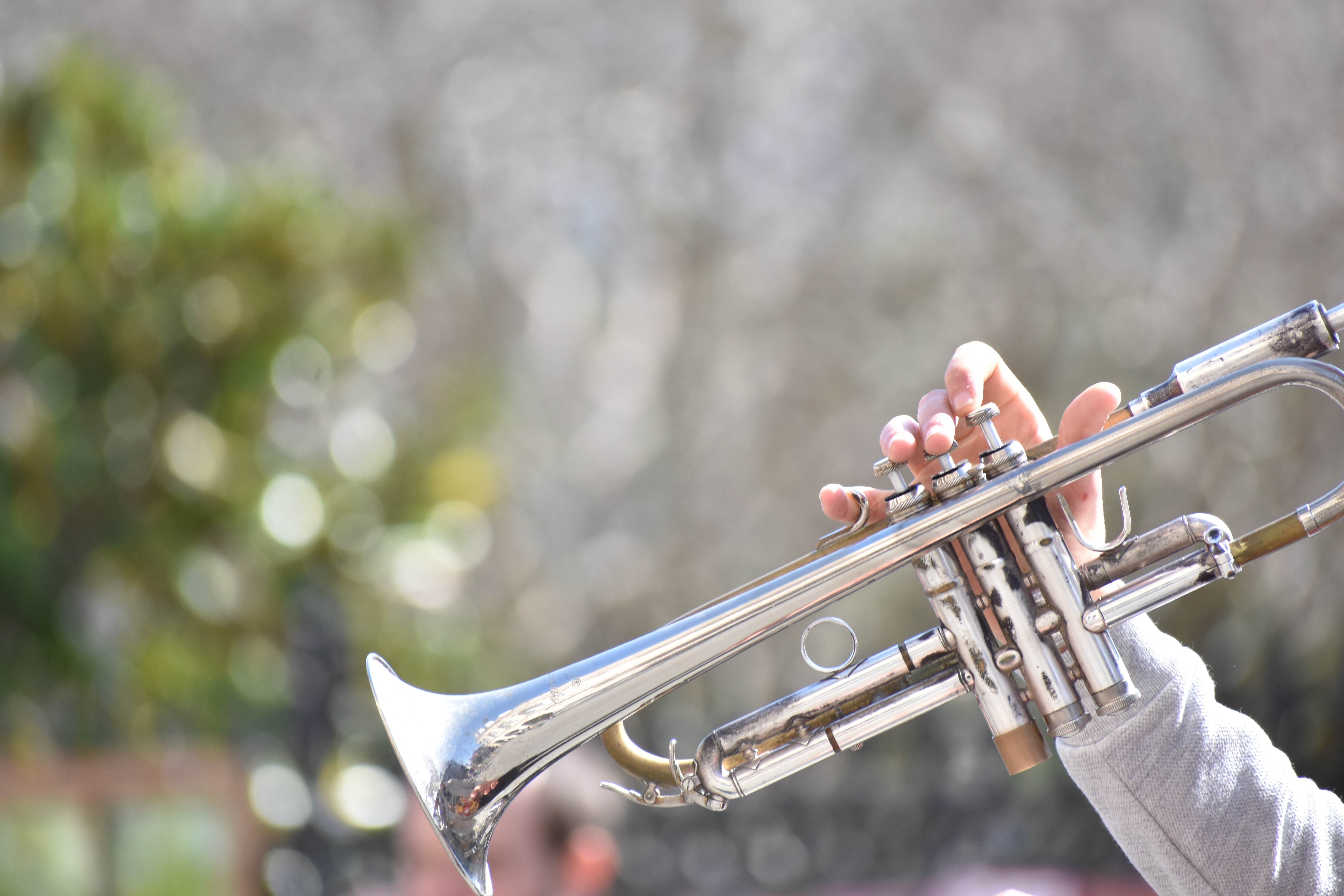 Imagine Arts Learn to Play Trumpet in Atlanta At Home Best Teacher